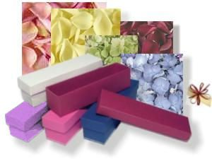 Box, Envelope, Ribbom and Dreied Flower Petal Colour Choices