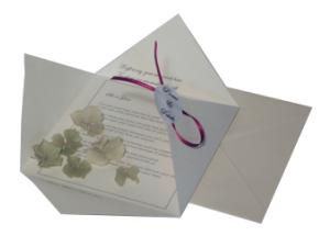 Special folded card with real dried flower petals